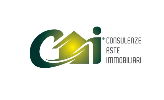 CAI Revolution investment